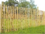 Chestnut paling-Fence panels